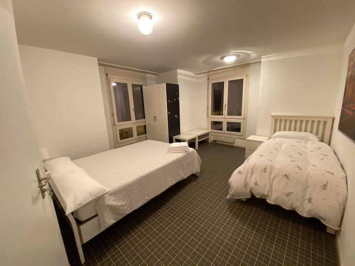 Spacious Room in Central Guest House of Basel (2)