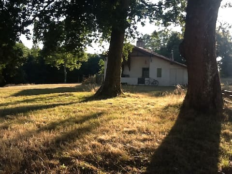 Peaceful farm, the heart of Landes