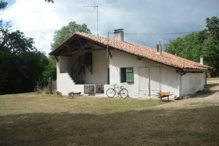 Peaceful farm, the heart of Landes - Arue