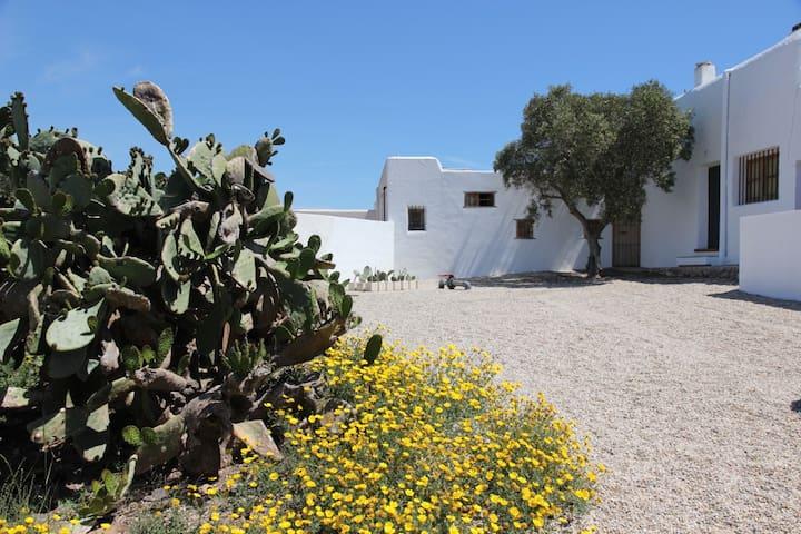 Cabo de Gata My grandfathers' house - Almería - Casa