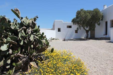 Cabo de Gata My grandfathers' house - Almería