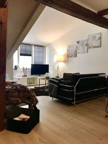 Luxury Apartment in the heart of the city centre - Winterthur - Apartament