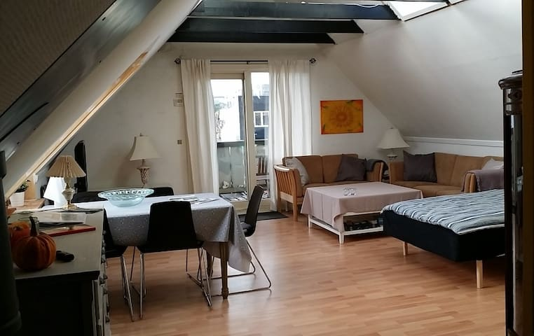 City view in CPH - apartment with own entrance