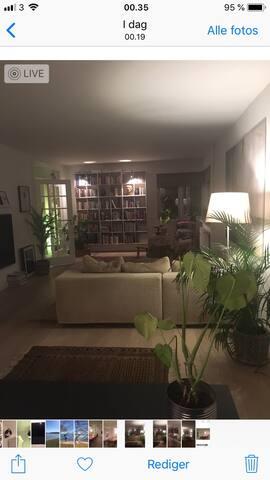 Dejligt værelse tæt på å, skov og by!