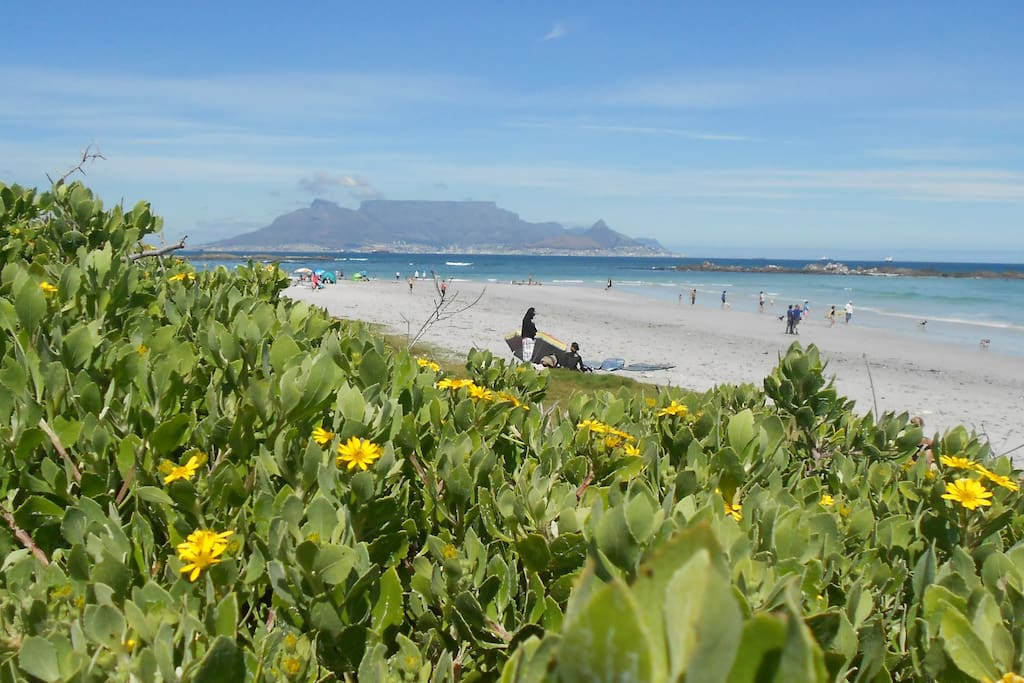 our very famous Table Mountain from Big Bay Bloubergstrand - 5min drive, 7min cycle and 20min walk from the house
