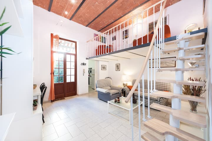 Oltrarno S.Frediano Apartment