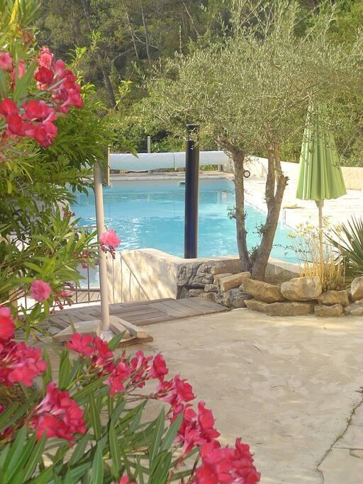 transats, parasols en bord de piscine au cœur d'un espace naturel.