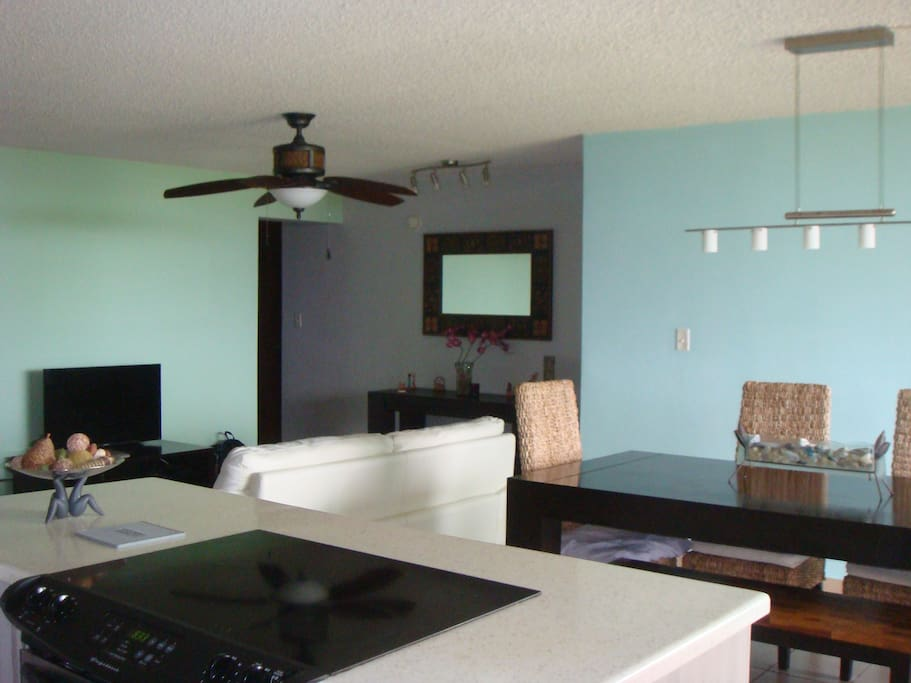Here the dinning, family area, hallway to the bedrooms and two full bathrooms.