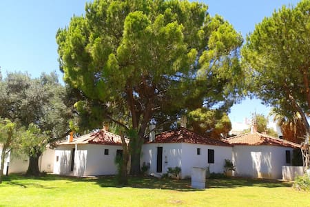 Little Cottage in Algarve's resort -Pedras del Rei - Pedras de El-Rei - Casa