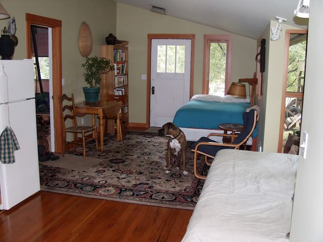 Studio on Orcas, close to the ferry