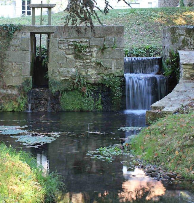 Le moulin du mesnil chenonceaux chambres d 39 h tes louer for Chambre d hote loire valley