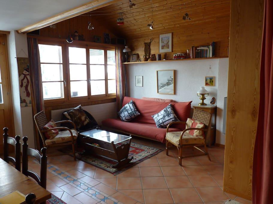 Salon avec futon transformable 2 places