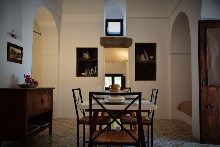 """dammuso Pantelleria """"orecchio d'elefante"""" - Pantelleria - House"""