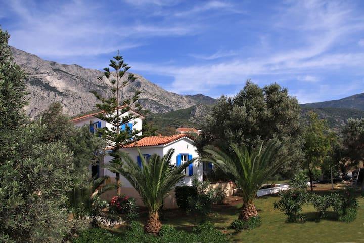 APARTMENT #1 @ Villa Flora apt