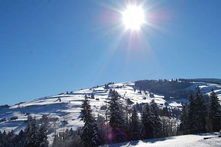 Ferienwohnung im Wander / Skigebiet - Wattwil