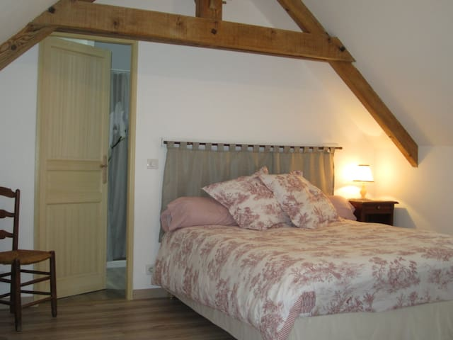 second bed room near Touraine  - Vicq-sur-Nahon - Bed & Breakfast