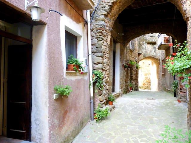 Casa Vacanze nel Parco Nazionale del Cilento - Stella Cilento - Dům