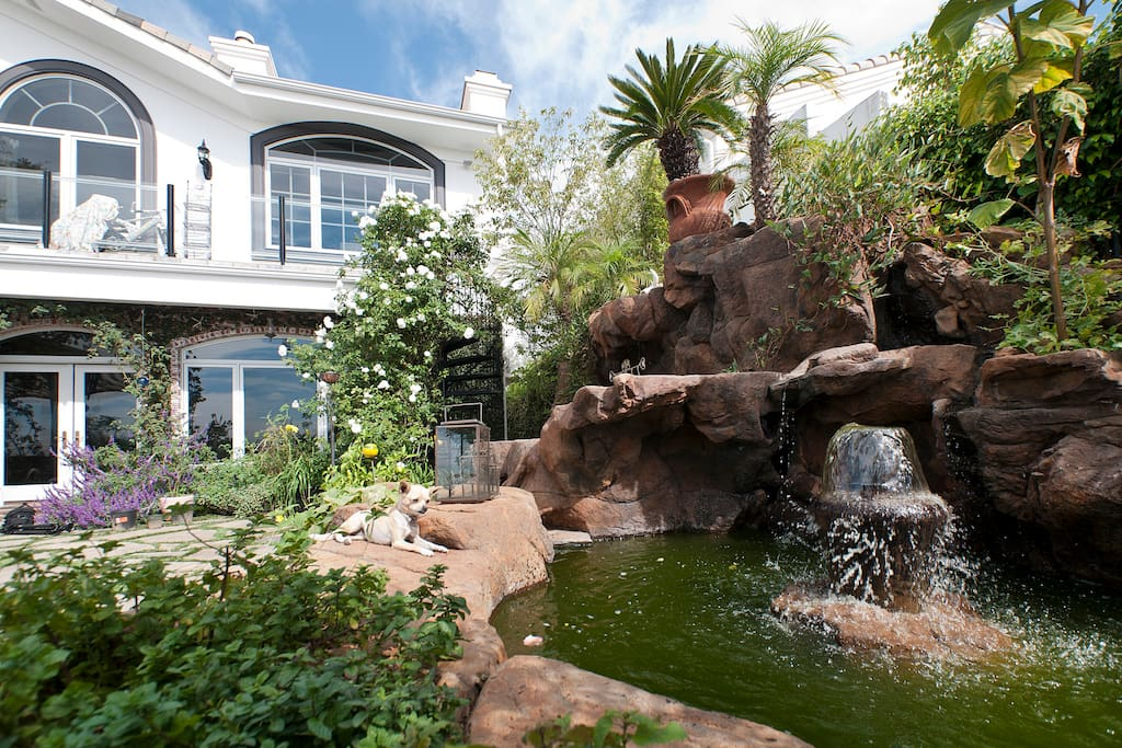 Picturesque backyard overlooking the ocean & mountains.  Koi and turtle pond with waterfalls.