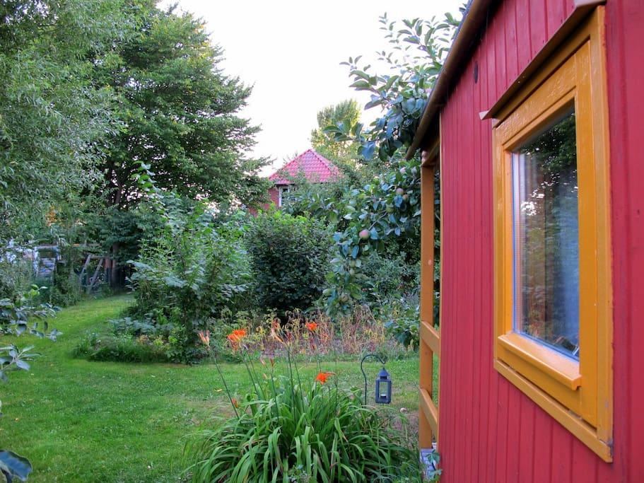 Blick nach Westen: Garten und Wohnhaus