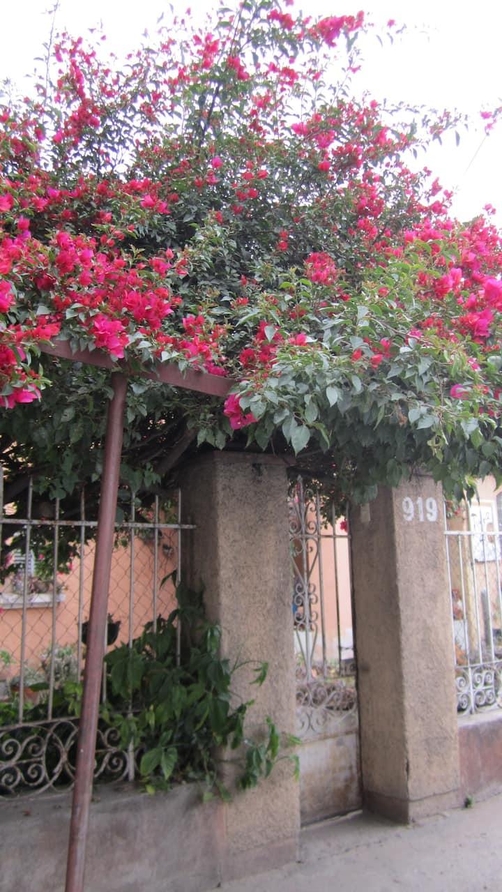 CASA TICO: Private Room in Central Oaxaca