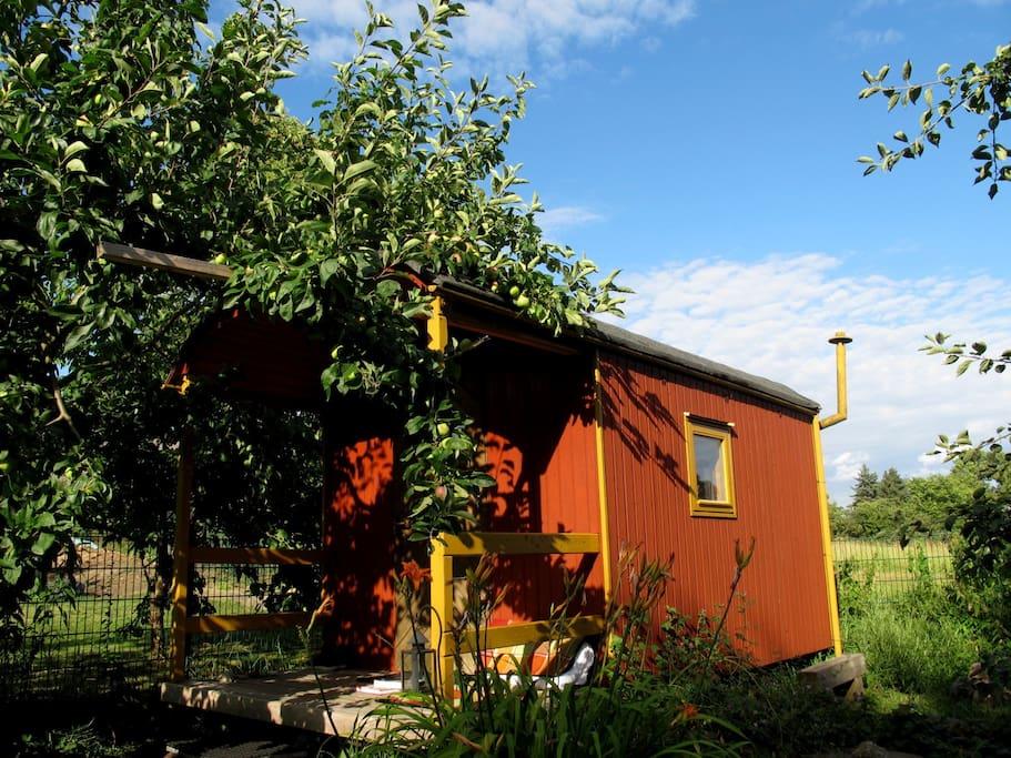 Airbnb For Cars >> Öko-Gästebauwagen - Camping-cars/caravanes à louer à Sierksdorf-Roge, Schleswig-Holstein, Allemagne