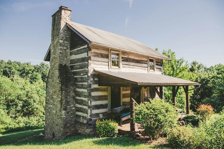 MoCo Cabin