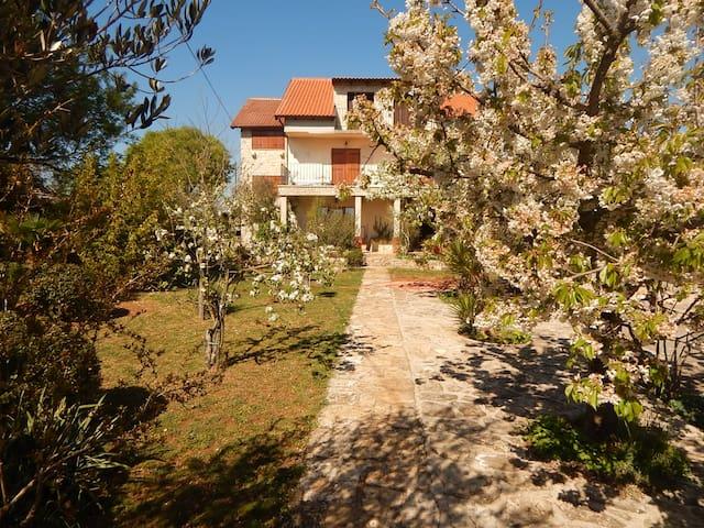Rooms Mandić - Goriš - Haus
