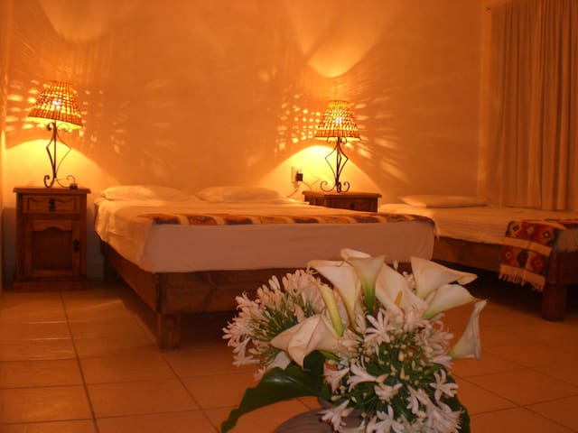 Very nice Apartments in Oaxaca  - Oaxaca - Apartment
