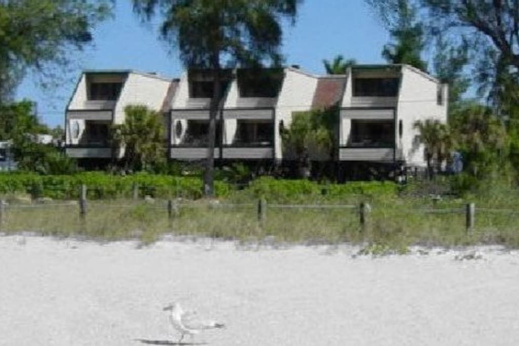 Bird's Nest apartments seen from the beach