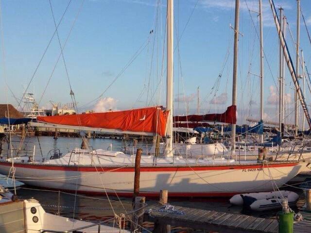 Fantastico velero para experiencia extraordinaria - Cancun - Barca