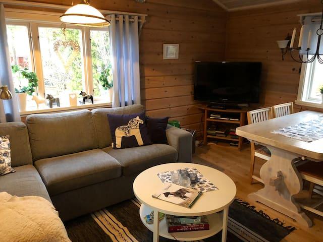 Gemytlig stuga i Gesunda, Dalarna
