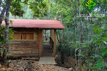 La Casa Del Bosque -Cacique Candela - Medellín