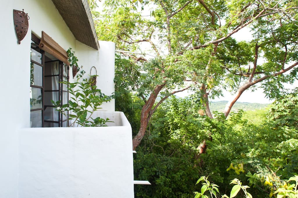 Casita Blanca is a treehouse with jungle views and peeks of blue