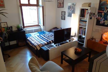 Appartment near 'Messe Basel' - Basilea