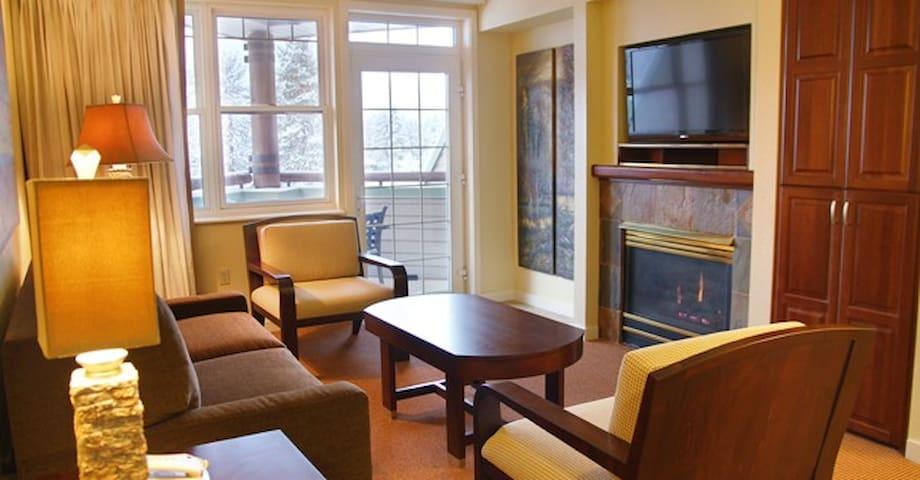 Living room with sleeper sofa. Gas Fireplace
