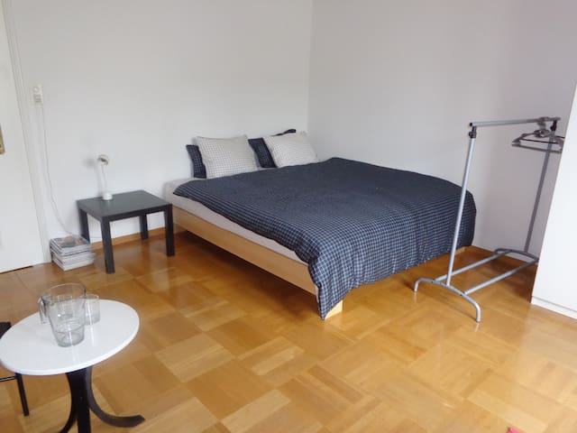 Private room in quiet neighborhood. - Zürich - Appartement