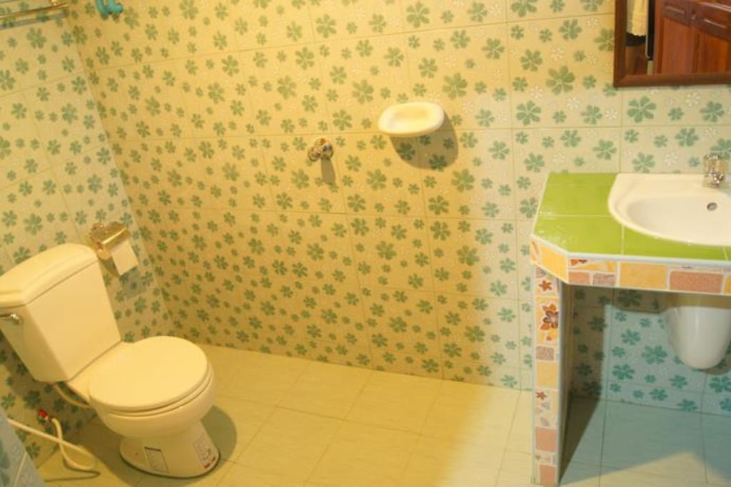 Big bathroom with shower & toilet bowl.