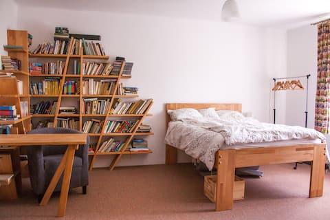 Pokoj s knihovnou