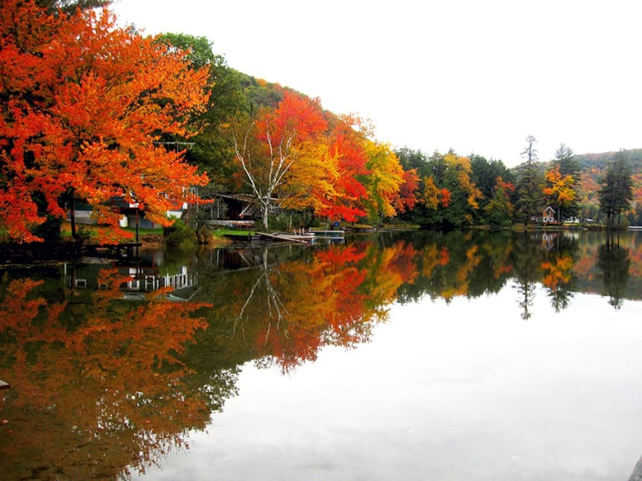 Metcalf Pond, in Autumn