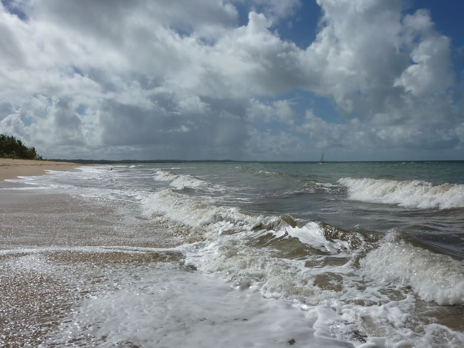 HIgh tide, and a bit of swell
