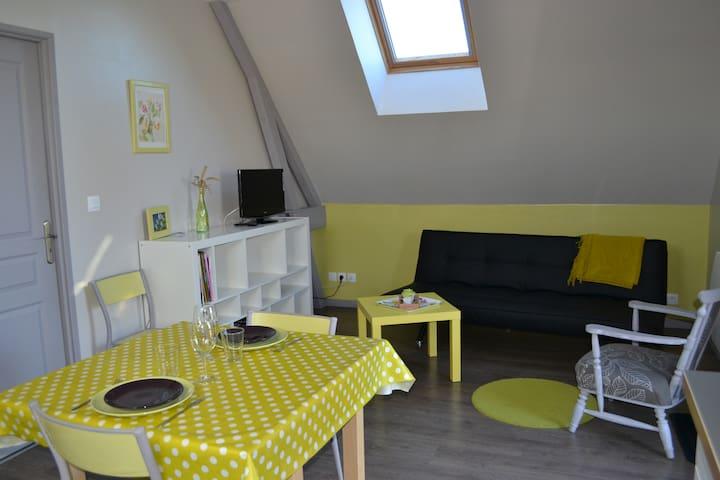 Appartement citron à la campagne - Les Trois-Pierres - Wohnung