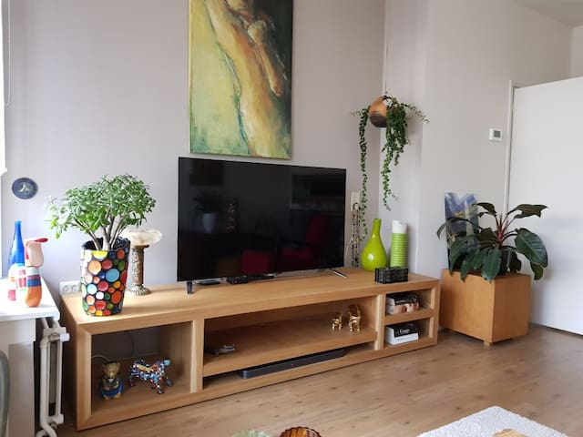 Bright and cozy apartment in The Hague!