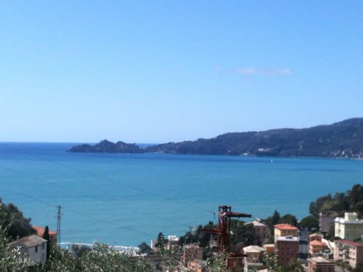 Impareggiabile vista su Portofino