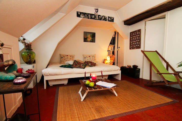 Charming/cosy flat hearth of Paris!