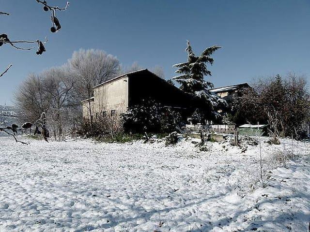 La casa nella golena del Po - San Benedetto Po - Rumah