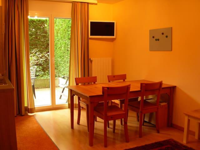 Wohnung im Stadtzentrum - Sion - Apartamento