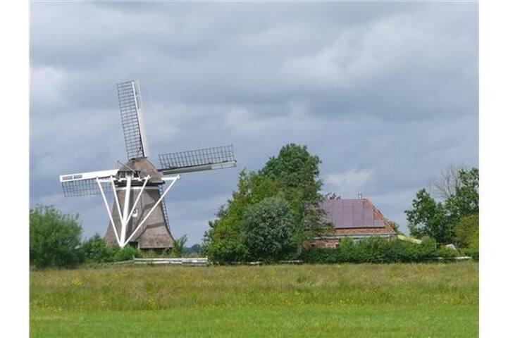 Wyns, unieke stilteplek middenin natuurgebied