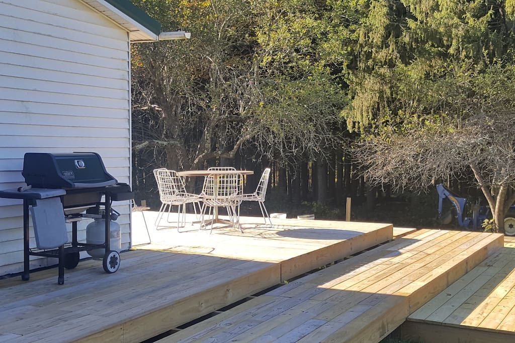 Large deck overlooking 38 acre property