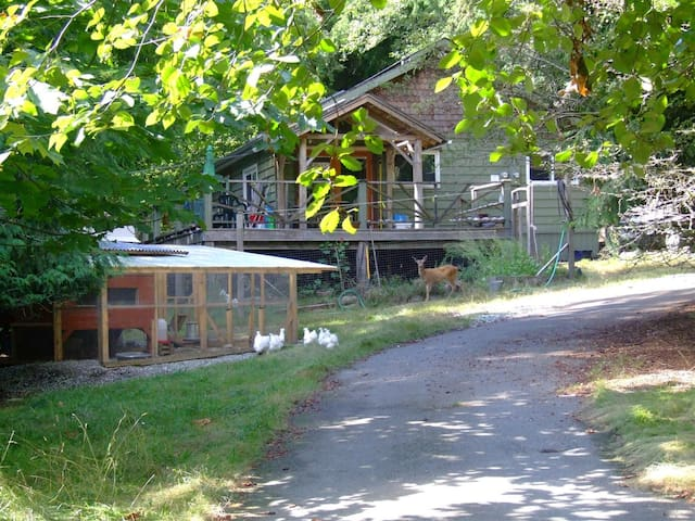A Country House in a Woodland B&B - Salt Spring Island - Bed & Breakfast