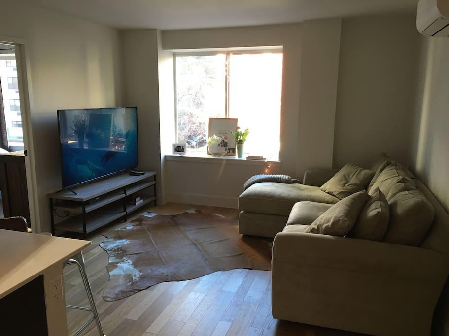 Sunny, bright living room.